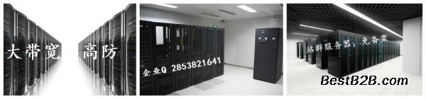 网站搭建站群服务器国内国外线路无延迟