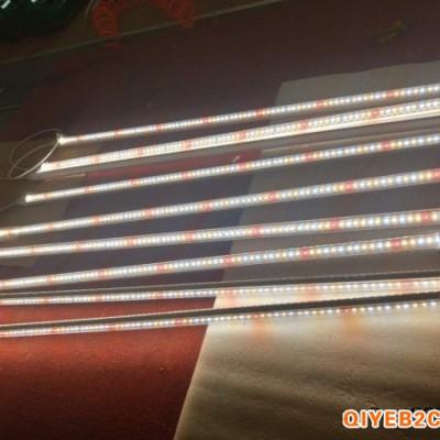 兰花补光灯全光谱led植物灯