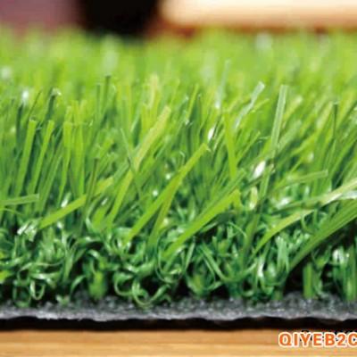 陕西西安草坪哥人造草坪足球场草坪运动草