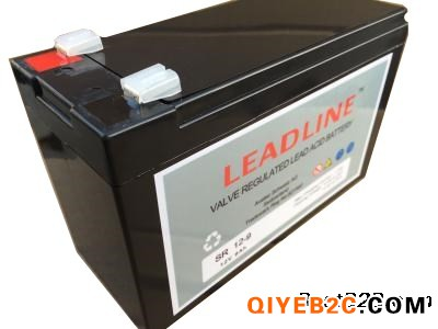 瑞士LEADLINE蓄电池EVR1228密封铅酸免
