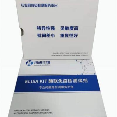 人白细胞介素8(IL-8)ELISA试剂盒