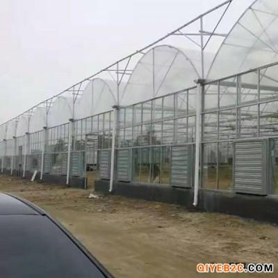 东阳温室承建薄膜连栋温室 瓜果育苗用温室